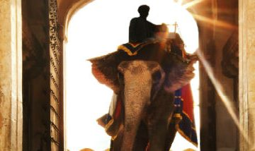Elephant in doorway