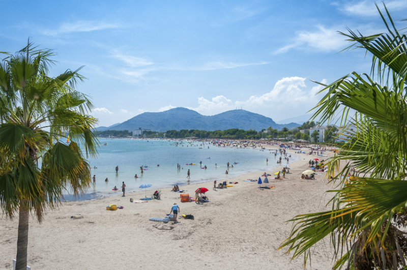 Beach in Majorca with palm trees