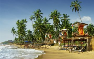 Beach and palm trees in Goa
