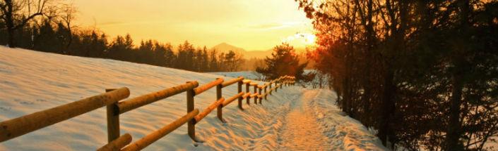 Winter susnet