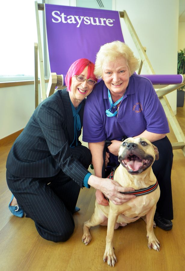 Jan's Dog Rescue Volunteer, Staysure Coventry Travel Charity Donation
