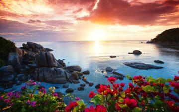 Tranquil beach resort, beautiful morning glory on the Koh Samui,
