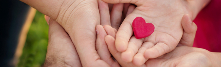Hands holding a small pink heart