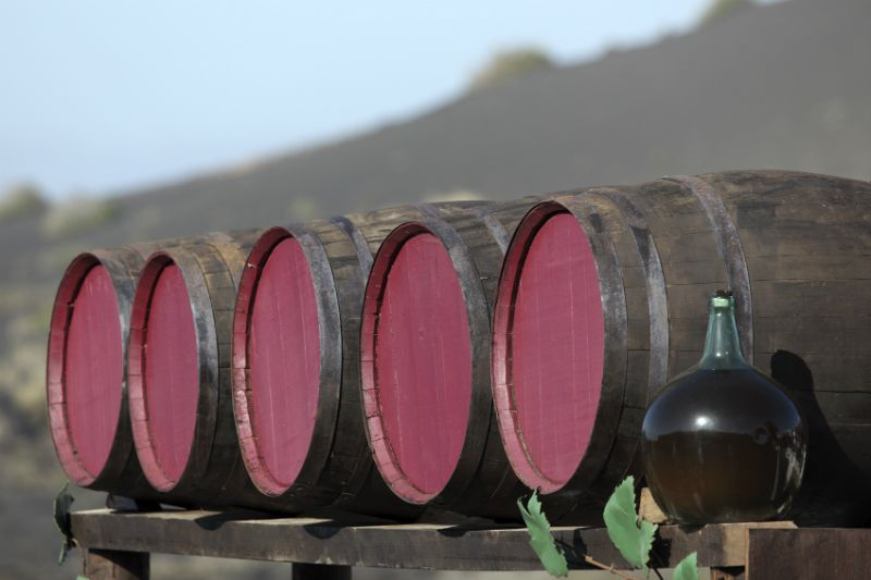 Wine barrels at a bodega, Lanzarote