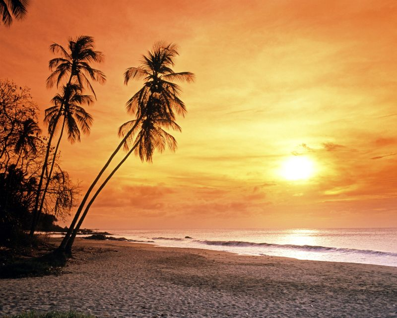 Beach at Sunset in Tobago