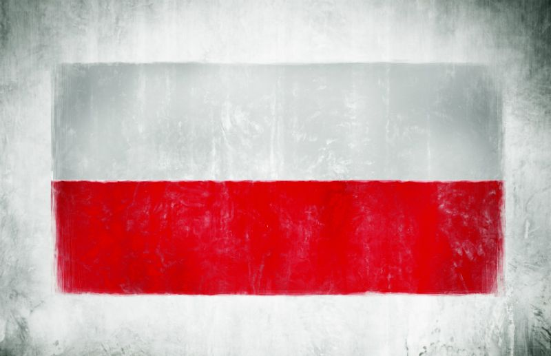 Painting of the National Flag of Poland