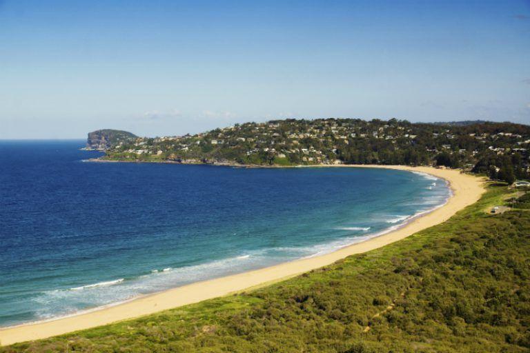 Palm beach in Sydney