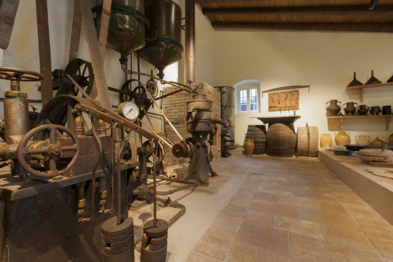 Olive Museum in Corfu
