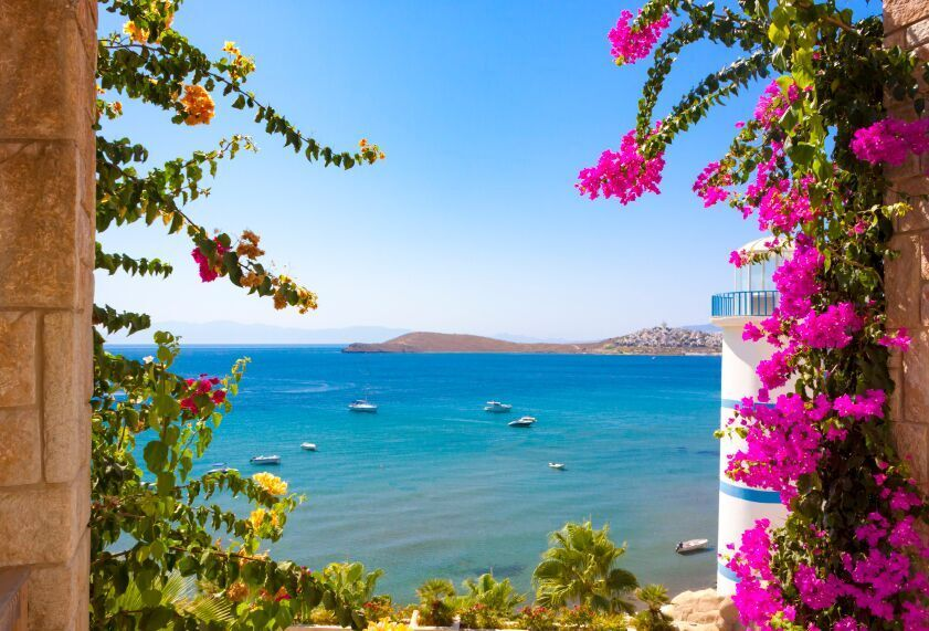 Flowers and Sea View Bodrum