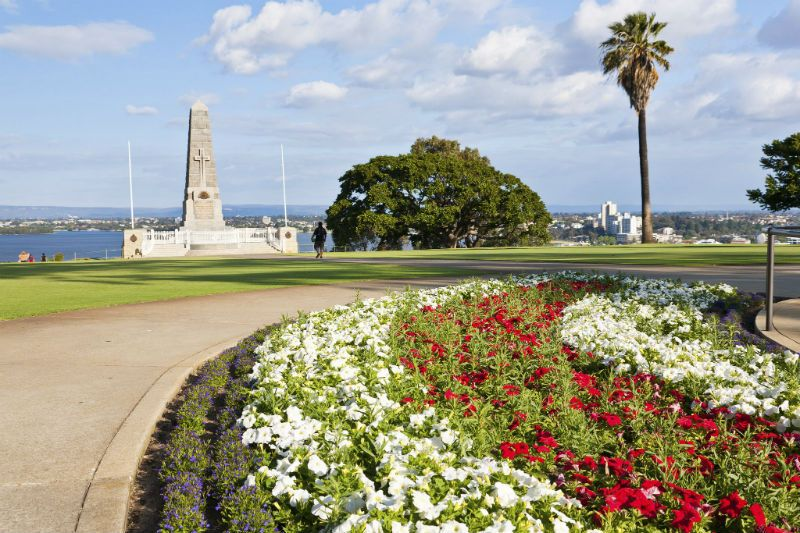 Kings Park and Botanic Garden in the day, Perth, Australia