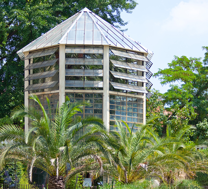 Botanical-garden-in-Padova
