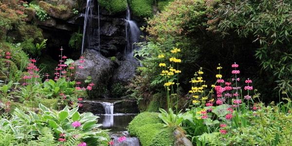 bodnant gardens national trust wales