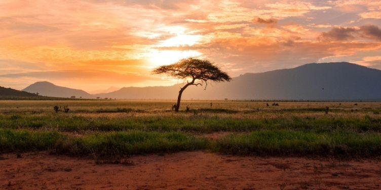 Kenya National Park views